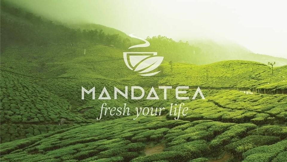 TƯ VẤN THƯƠNG HIỆU MANDA TEA